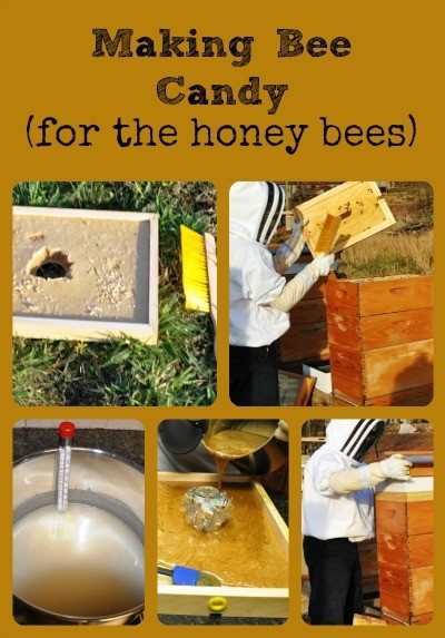 Making Bee Candy Collage