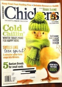 Nov_Dec Chickens Mag via Better Hens and Gardens