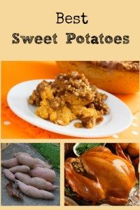 Best Sweet Potatoes