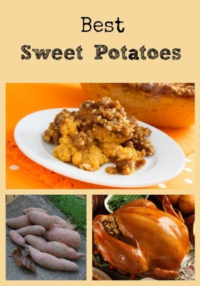 Best Sweet Potatoes Collage