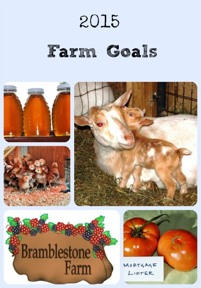 2015 Farm Goals Collage via Better Hens and Gardens