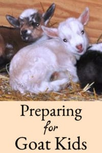 Preparing for Goat Kidding