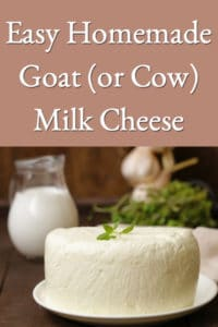 Easy Homemade Goat (or Cow) Milk Cheese