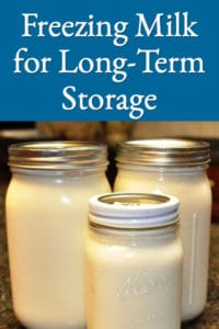 Freeze Excess Milk for Storage and Winter Use