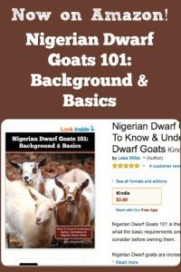 Now on Amazon! Nigerian Dwarf Goats 101: Background & Basics