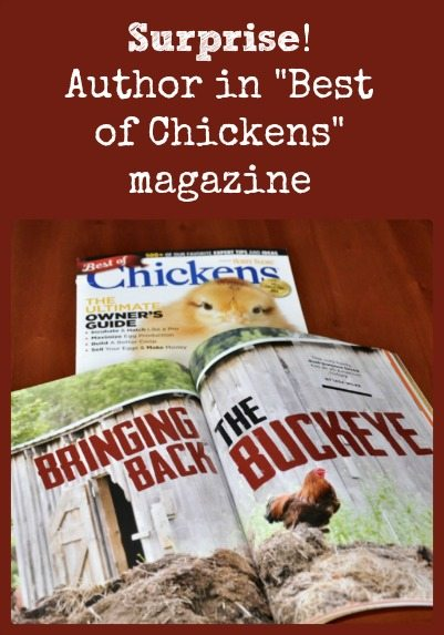 Best of Chickens magazine collage