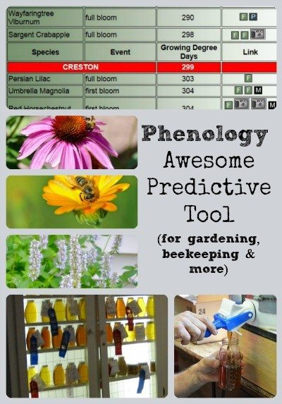 Phenology Awesome Predictive Tool