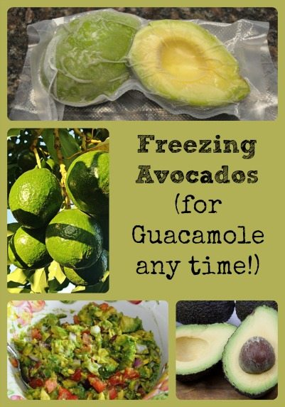 Freezing Avocados Collage