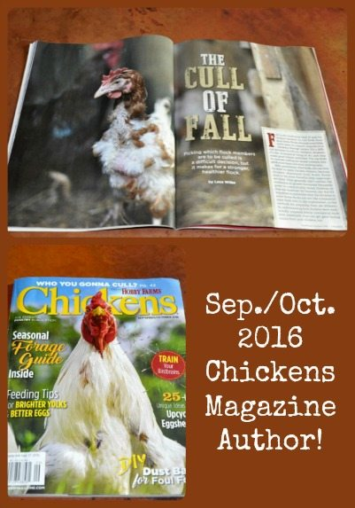 Sep_Oct 2016 Chickens Mag Collage
