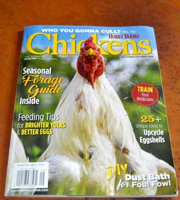 Sept/Oct 2016 Chickens Cover Photo