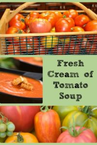 Fresh Cream of Tomato Soup