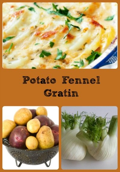 potato-fennel-gratin