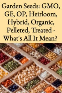 Garden Seeds – GE, GMO, Heirloom – What's It Mean?