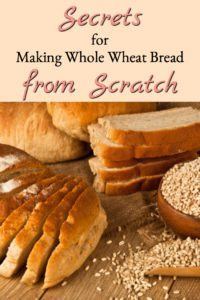 Secrets for Whole Wheat Bread Baking