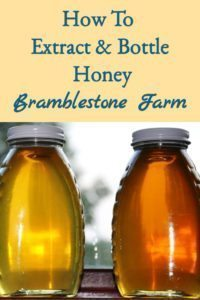 How To Extract & Bottle Honey – Bramblestone Farm