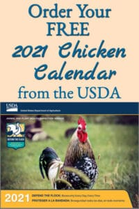 How To Get A FREE 2021 Chicken Calendar