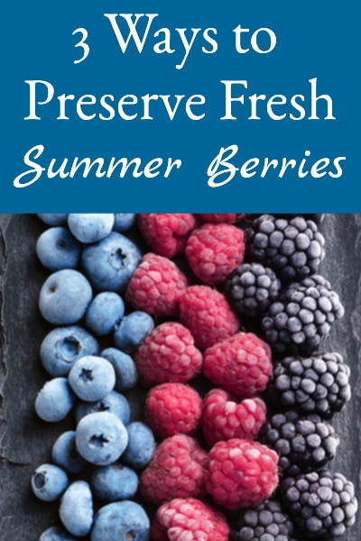 Ways to Preserve Fresh Summer Berries