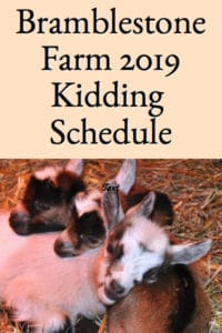 Bramblestone Farm's 2019 Kidding Schedule