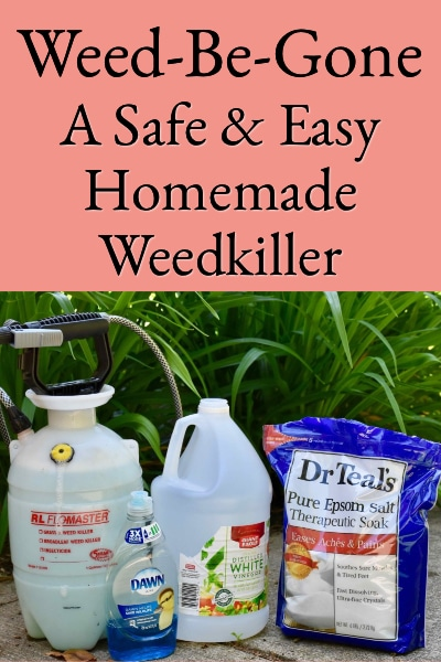 Weed-Be-Gone, A Safe & Easy Homemade Weedkiller