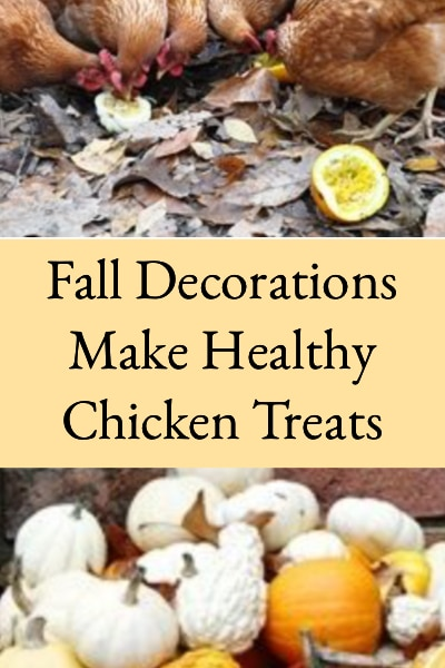 fall decorations make healthy chicken treats
