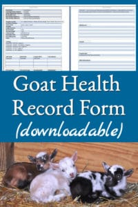Goat Health Record Form (Downloadable)