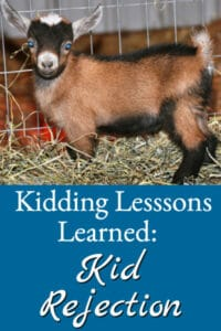 Kidding Lessons Learned Kid Rejection