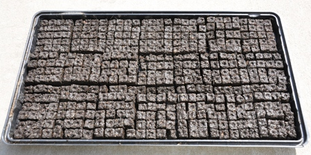 420 Soil Blocks