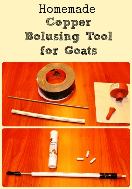 Homemade Copper Bolusing Tool via Better Hens and Gardens