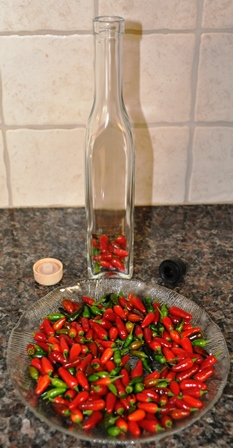 Hot Pepper Oil 2