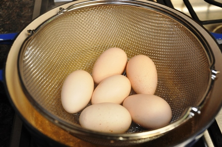 Steaming Eggs 1